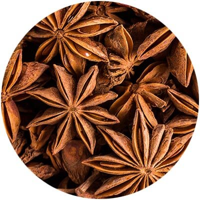 Anise is one of the certified organic ingredients used in DNA Organics hair care and colour products