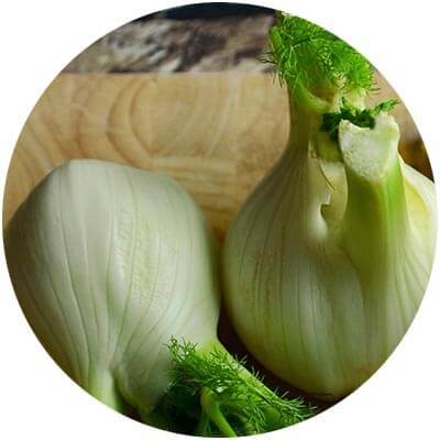 Fennel is one of the certified organic ingredients used in DNA Organics hair care and colour products