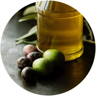 organic ingredients organic hair care Certified Organic Olive Oil is one of the certified organic ingredients used in DNA Organics hair care and colour products
